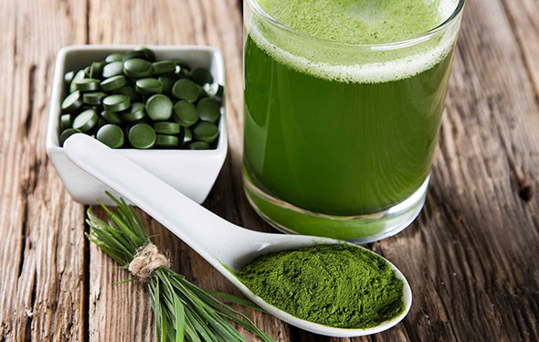 La spiruline, super aliment